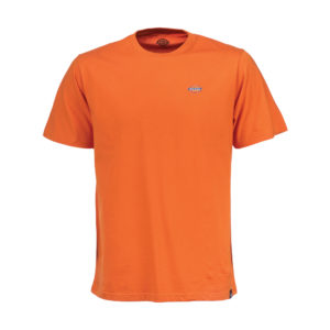 Dickies-Stockdale-1-Orange